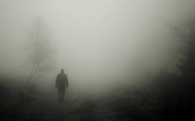 When the fog rolls in, what would you do?