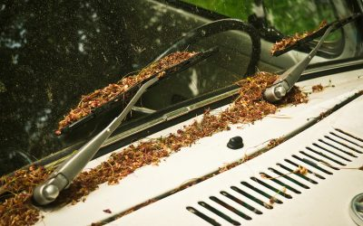 Tips for good car maintenance in warm weather
